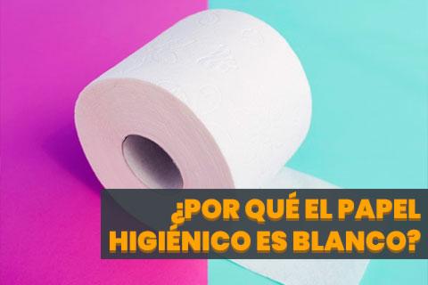 ¿Por Qué el Papel Higiénico es Blanco?